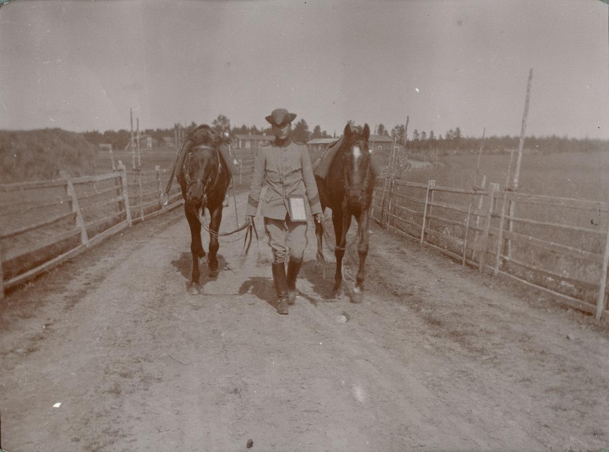 Soldat med hästar Kronprinsens husarregemente K 7.