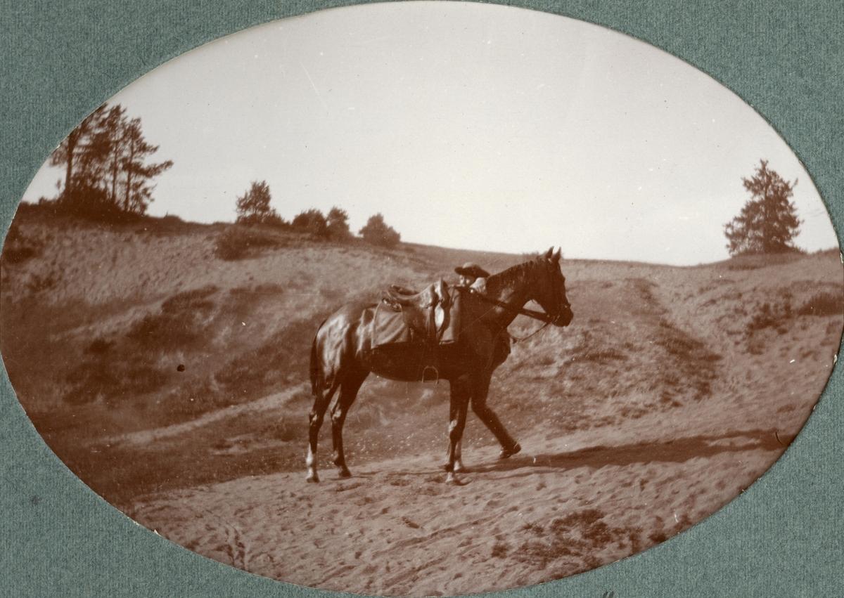 Soldat och häst Kronprinsens husarregemente K 7.