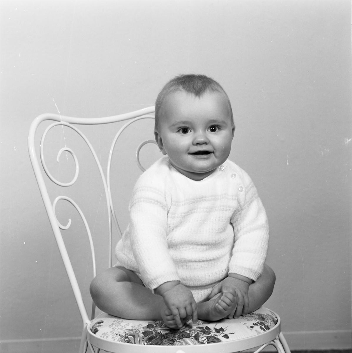 Portrett. Liten gutt. Bestilt av Magnhild Johannesen. 5574 Skjold