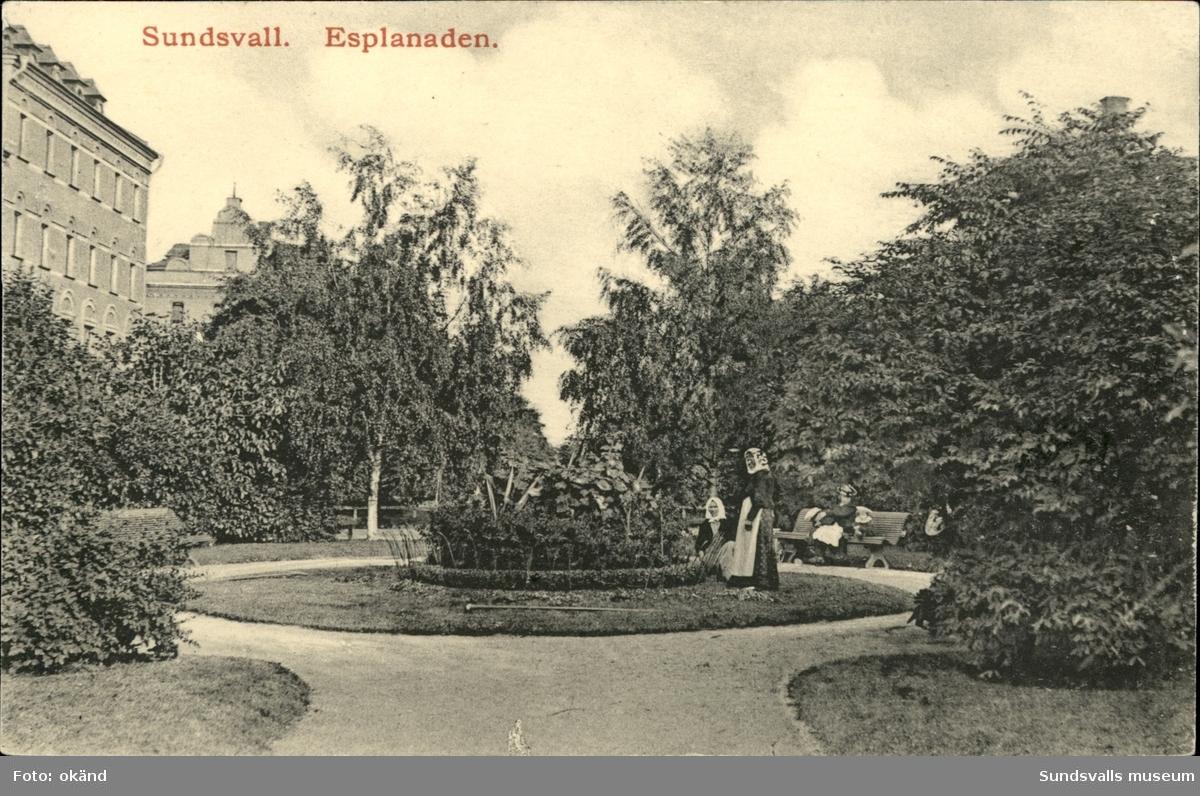 Vykort med motiv av Esplanden i Sundsvall.