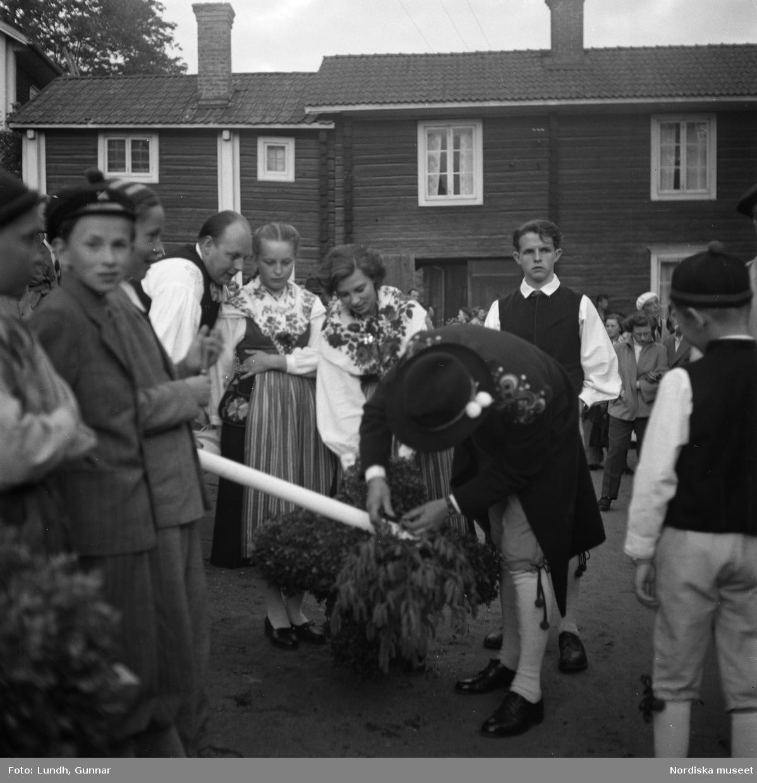 Motiv: Tibble midsommar ; Kvinnor och män arbetar med att pryda en midsommarstång inför en publik, resning av midsommarstång.