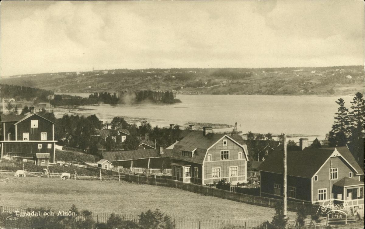 Vykort med motiv över sågverkssamhället Tunadal och bebyggelsen på Alnön.