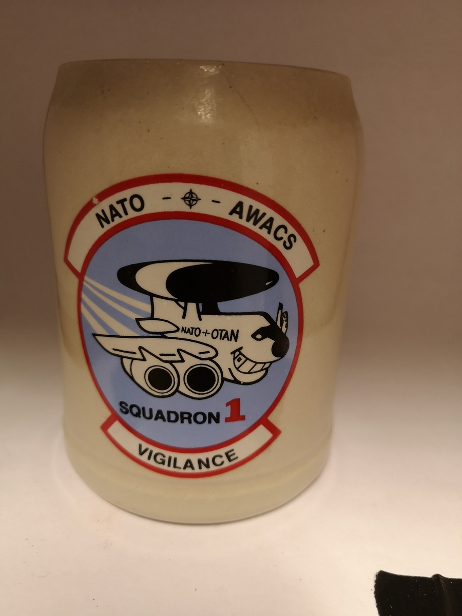 NATO AWACS. E-3A Component.