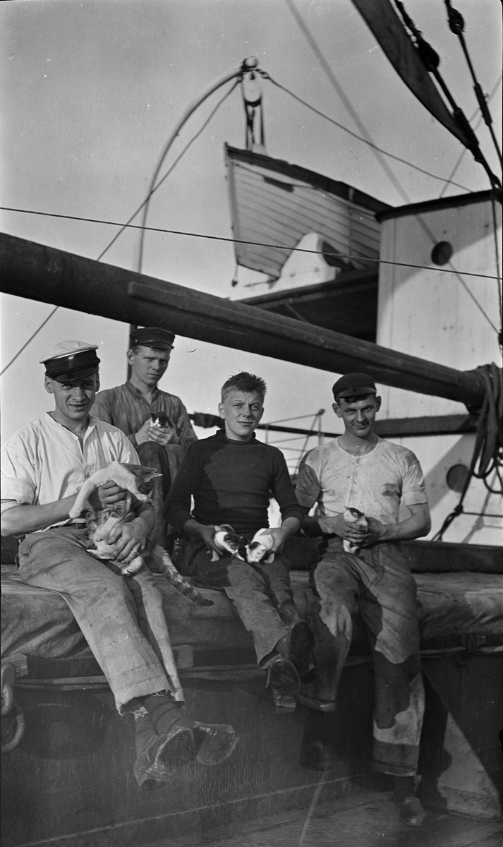 Fire unge sjømenn som holder katt og kattunger ombord på D/S STORFOND, stuert Lars Johansen til venstre.