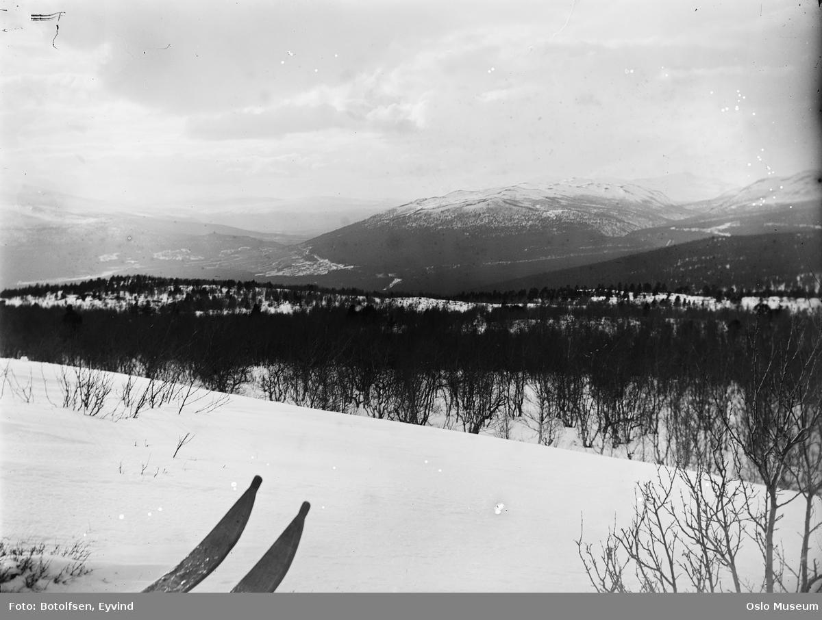 landskap, fjell, snø, skitupper