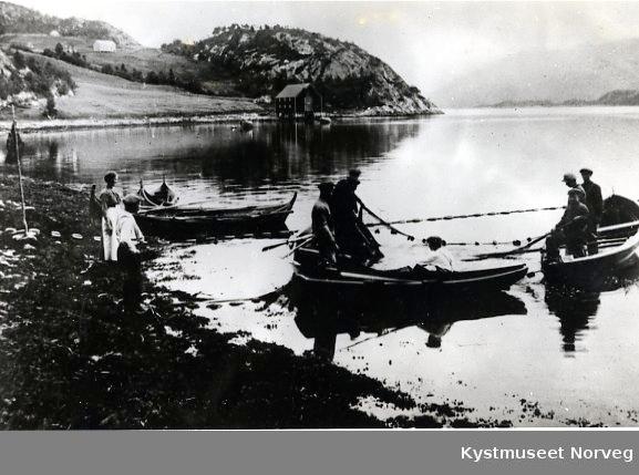 Landnotsteng på Hagabukta i Kolvereidvågen
