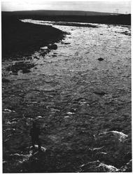 Laksefiske i Komagfjordelva. Finnmark
