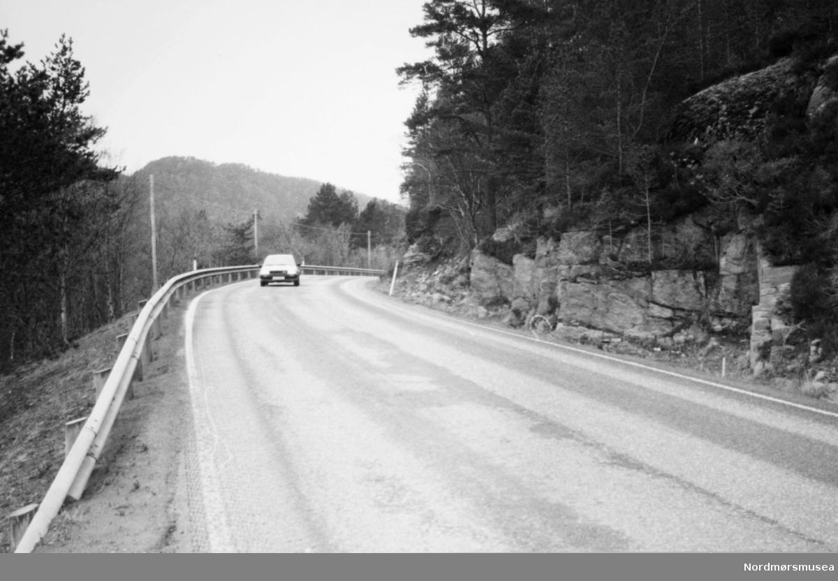 Trolig nær Bolgavatnet på Frei. Bildet er fra avisa Tidens Krav sitt arkiv i tidsrommet 1970-1994. Nå i Nordmøre museums fotosamling.