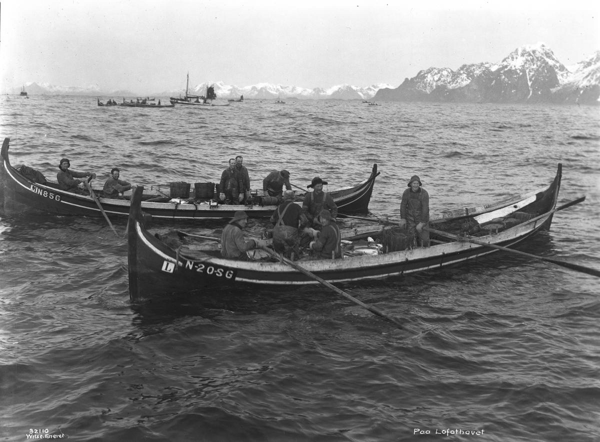 Prot: Lofotfiske Paa Lofothavet. Ottering