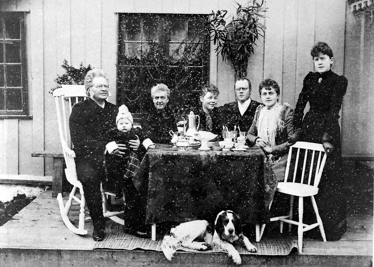 Familie, Bjørnson, Aulestad,