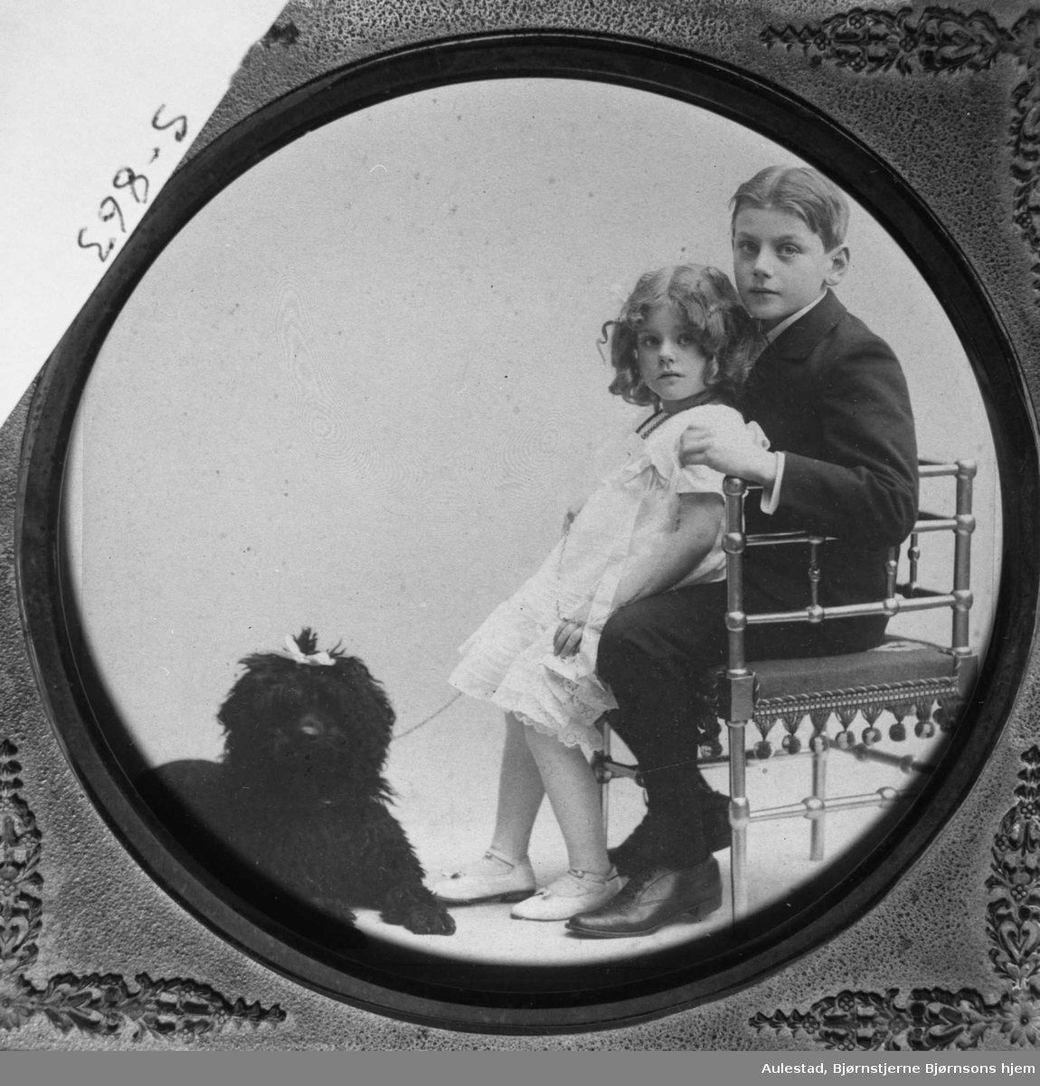 Tancred og Irene Ibsen med puddelen Cato.