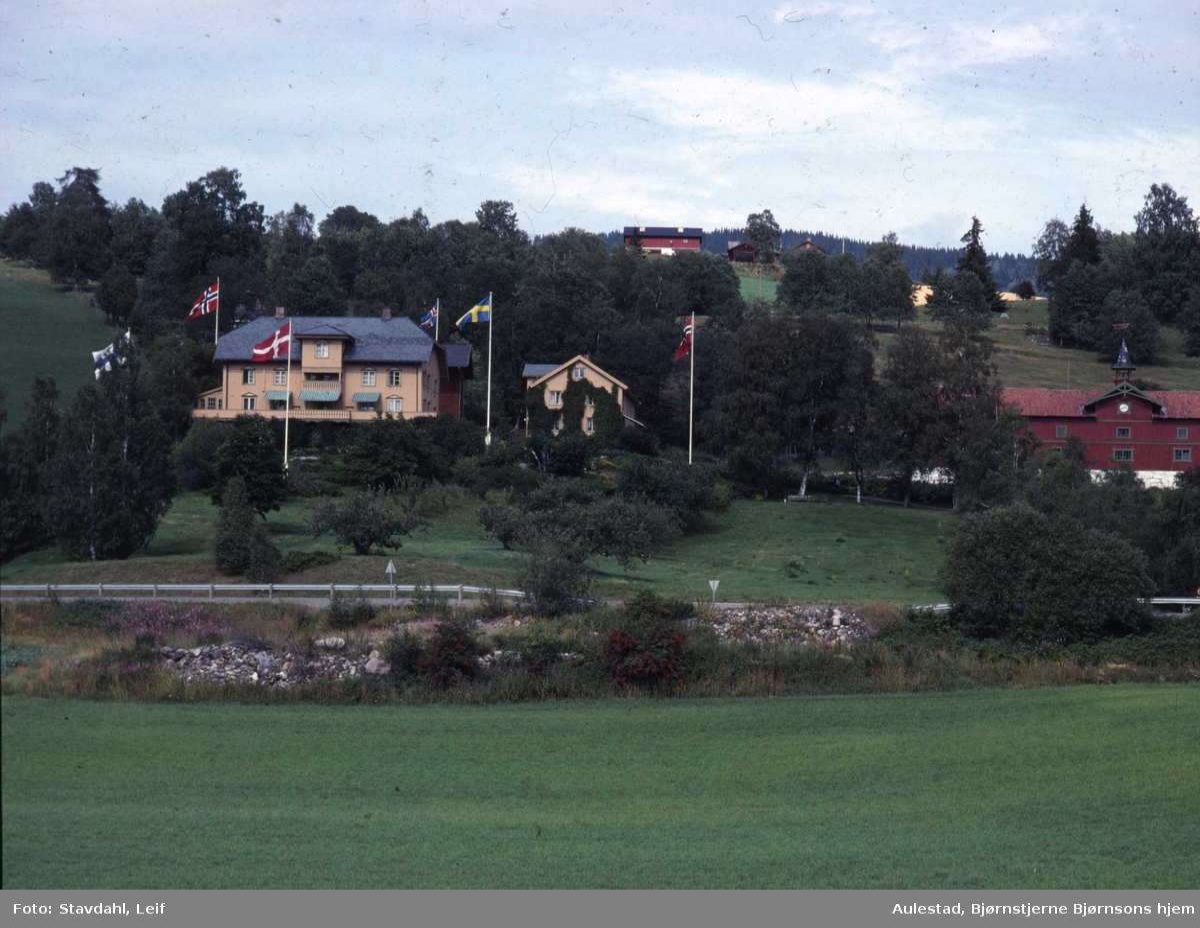 DOK:1991, Aulestad, vei, jorde,