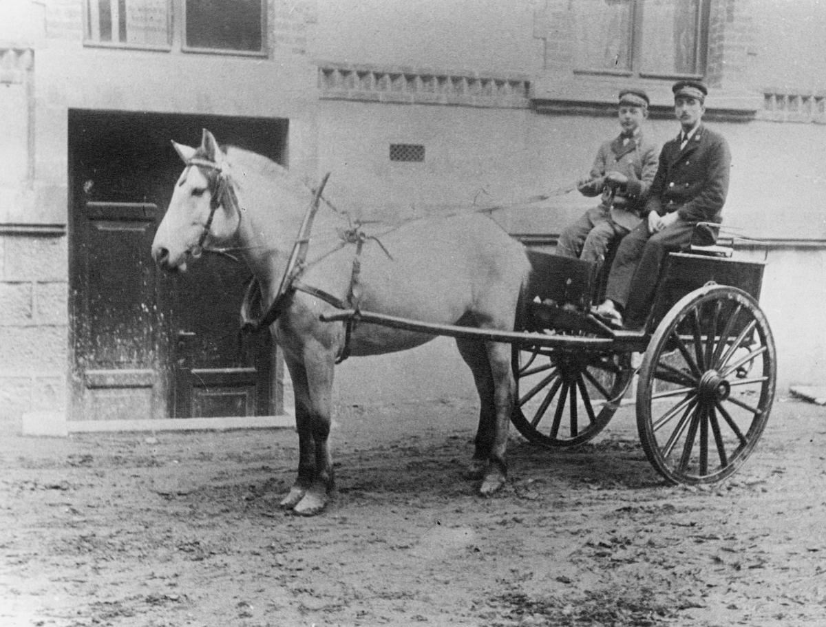 transport, hest, vogn 2 hjul, postfører, postbud, Bergen