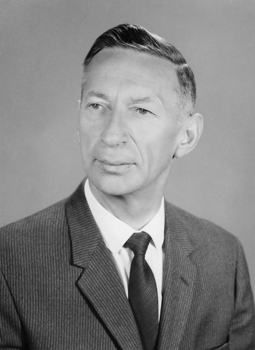 portrett, mann, postmester Odd Håvåg