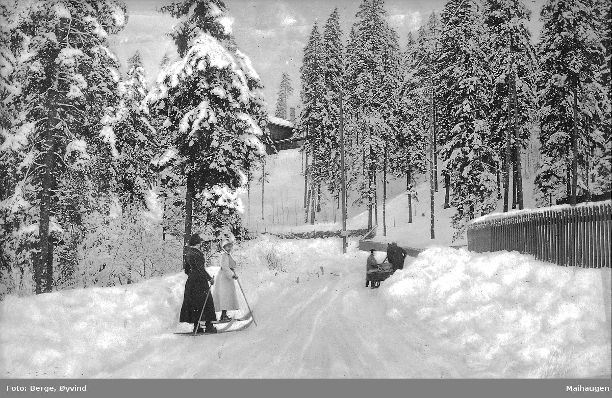 To kvinner på ski, skog, hest med slede i bakgrunnen, vinter