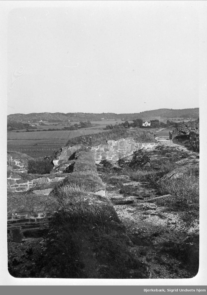 Landskap, mur