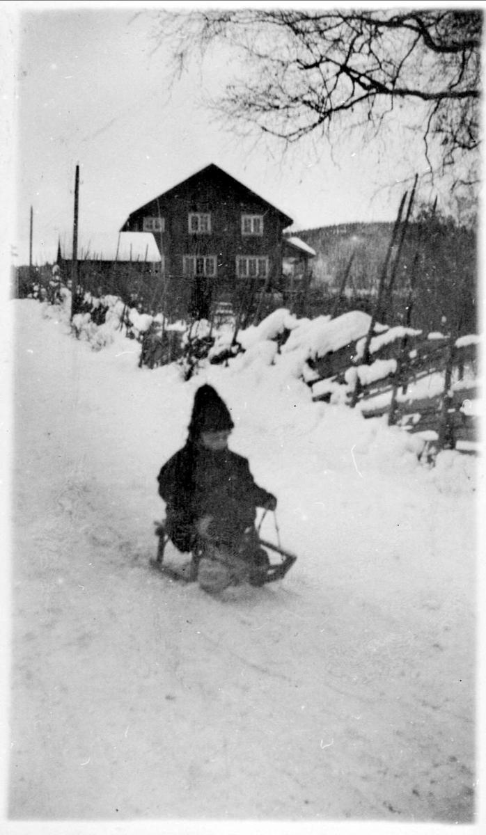 Barn, snø, kjelke