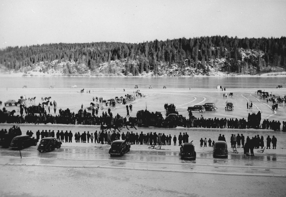 Hesteløp på isen på Årungen. Publikum og biler rundt banen.