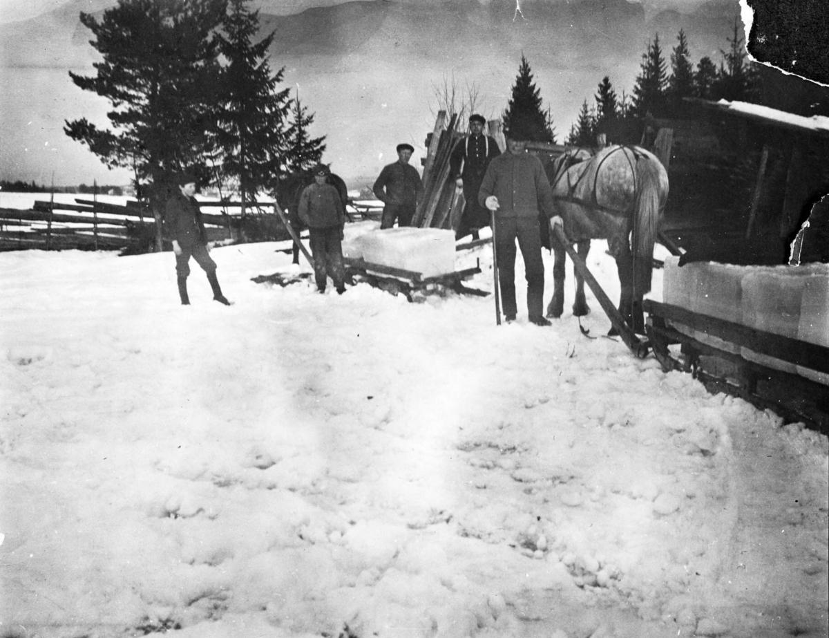 Bl. a. Alf og Julius Feiring kjører isblokker fra Langvannet.