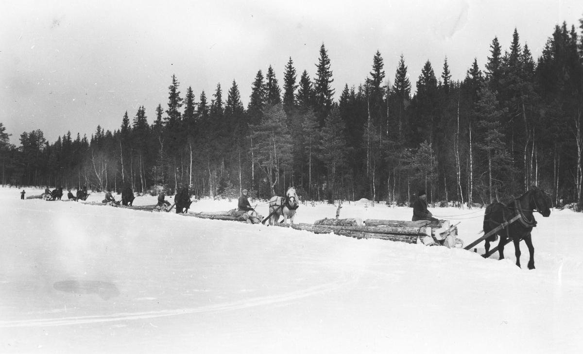 Tømmerkjøring med hest fra Ruud skog, tatt på Nettsjøen.