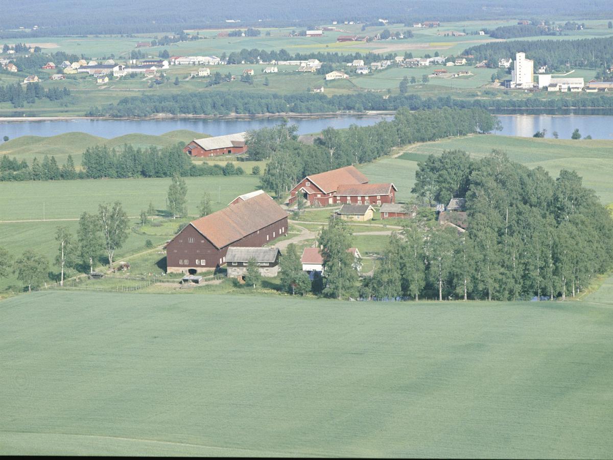 Rotnesgårdene på Årnes. Siloen i bakgrunnen.