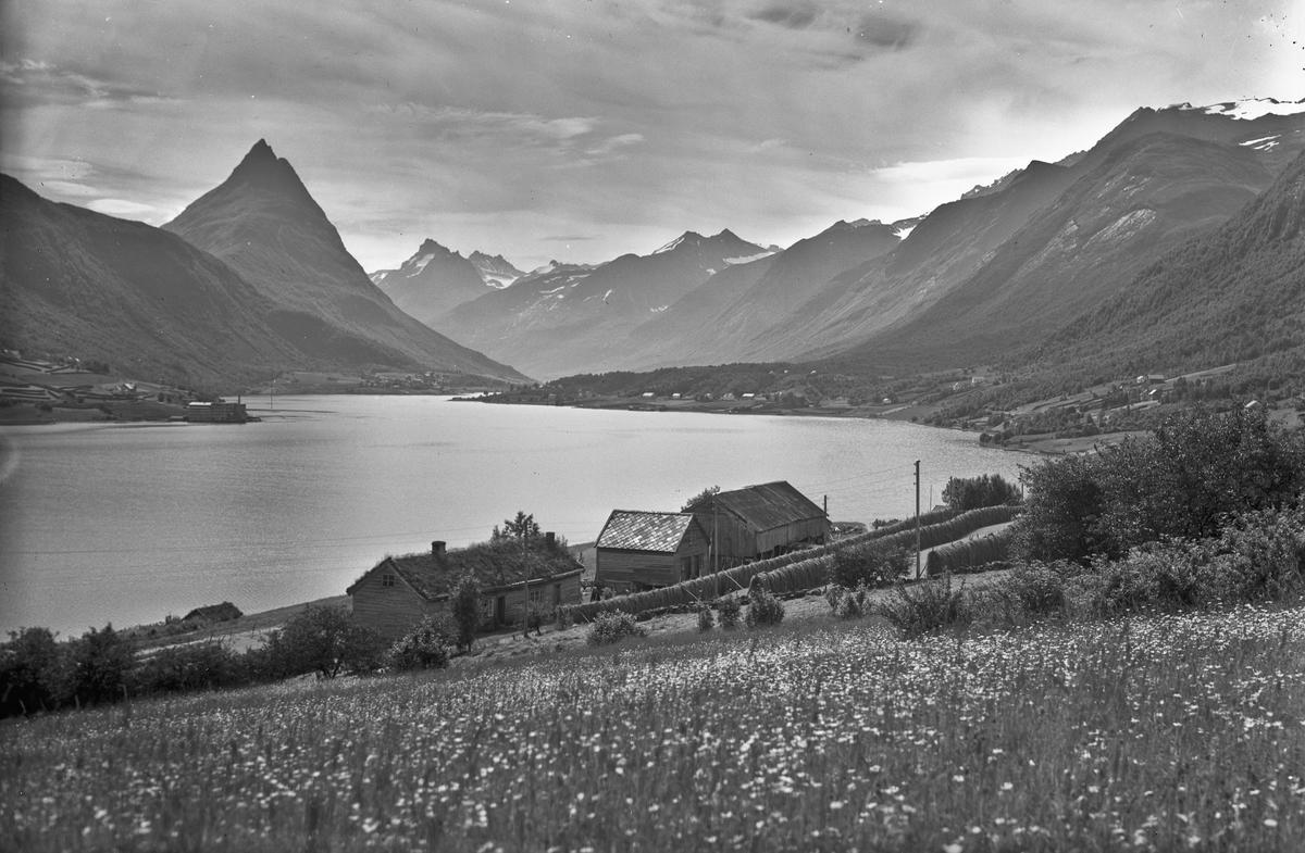 Fjell-/fjordlandskap.