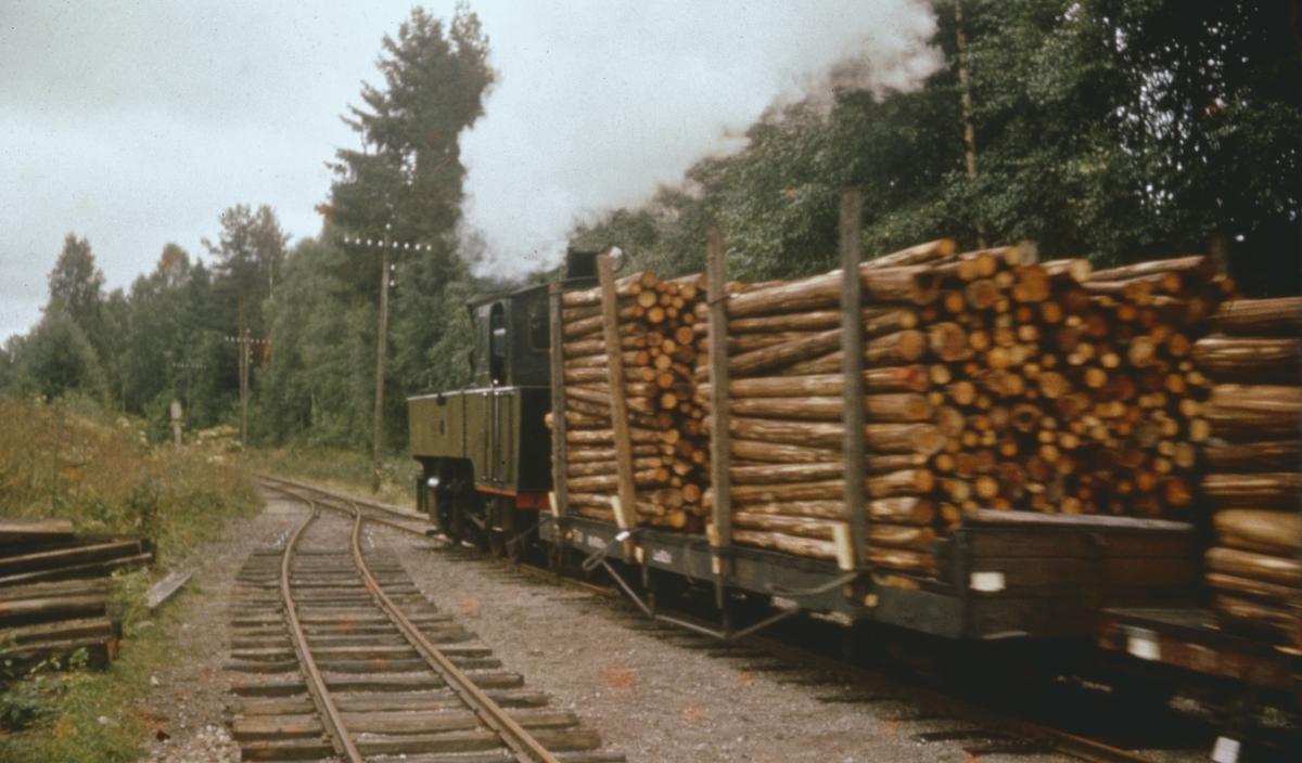 Tog 2051 til Skulerud på Hemnes stasjon. De første vognene er lastet med 3 m kubb som skal fløtes i bunter til Saugbrugsforeningen i Halden.
