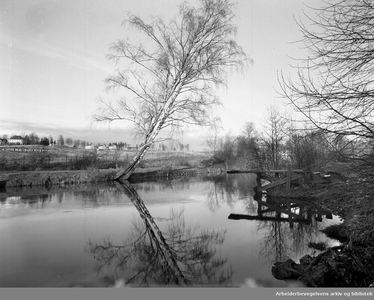 """Stilla"" i Nydalen,.desember 1948"