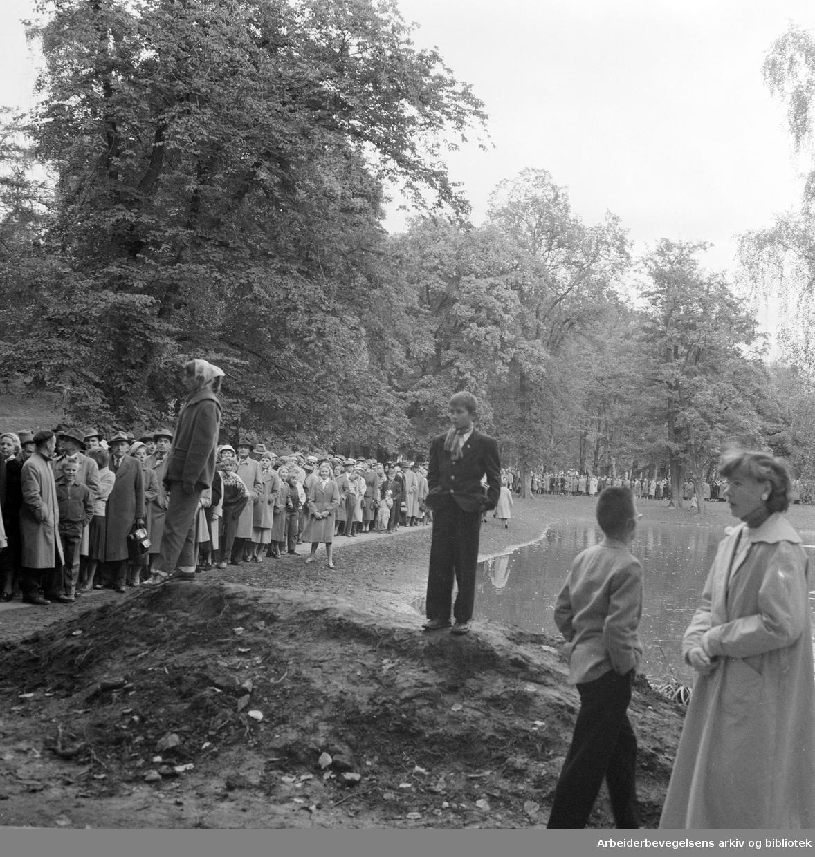 Kong Haakon VIIs død..Folk samler seg foran Slottet og i Slottsparken,.september 1957