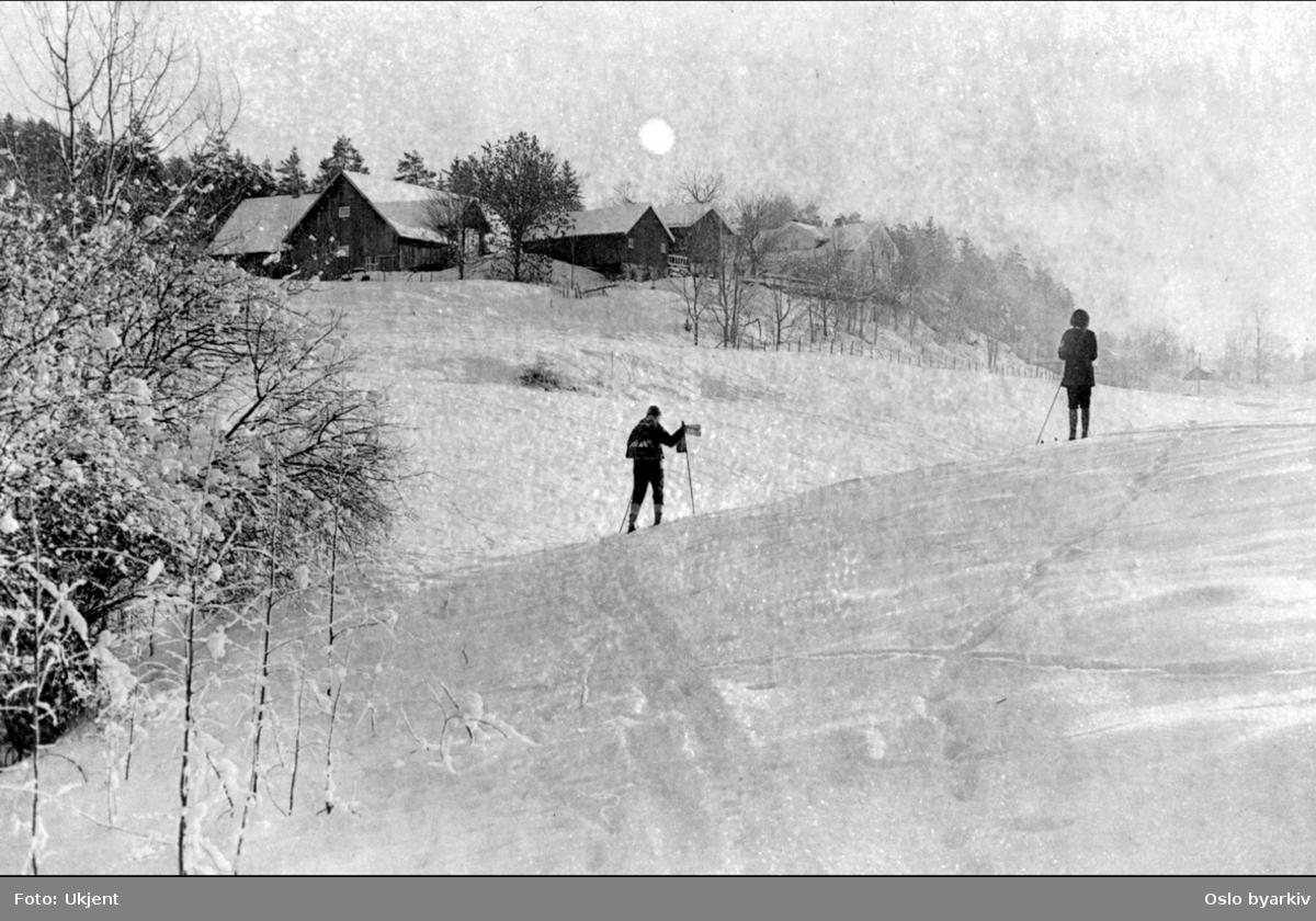 Nordre Dal gård. Fotografen har stått der hvor Vinterveien (gang og sykkelveien) går i dag.. Mann og kvinne på ski, vinter.
