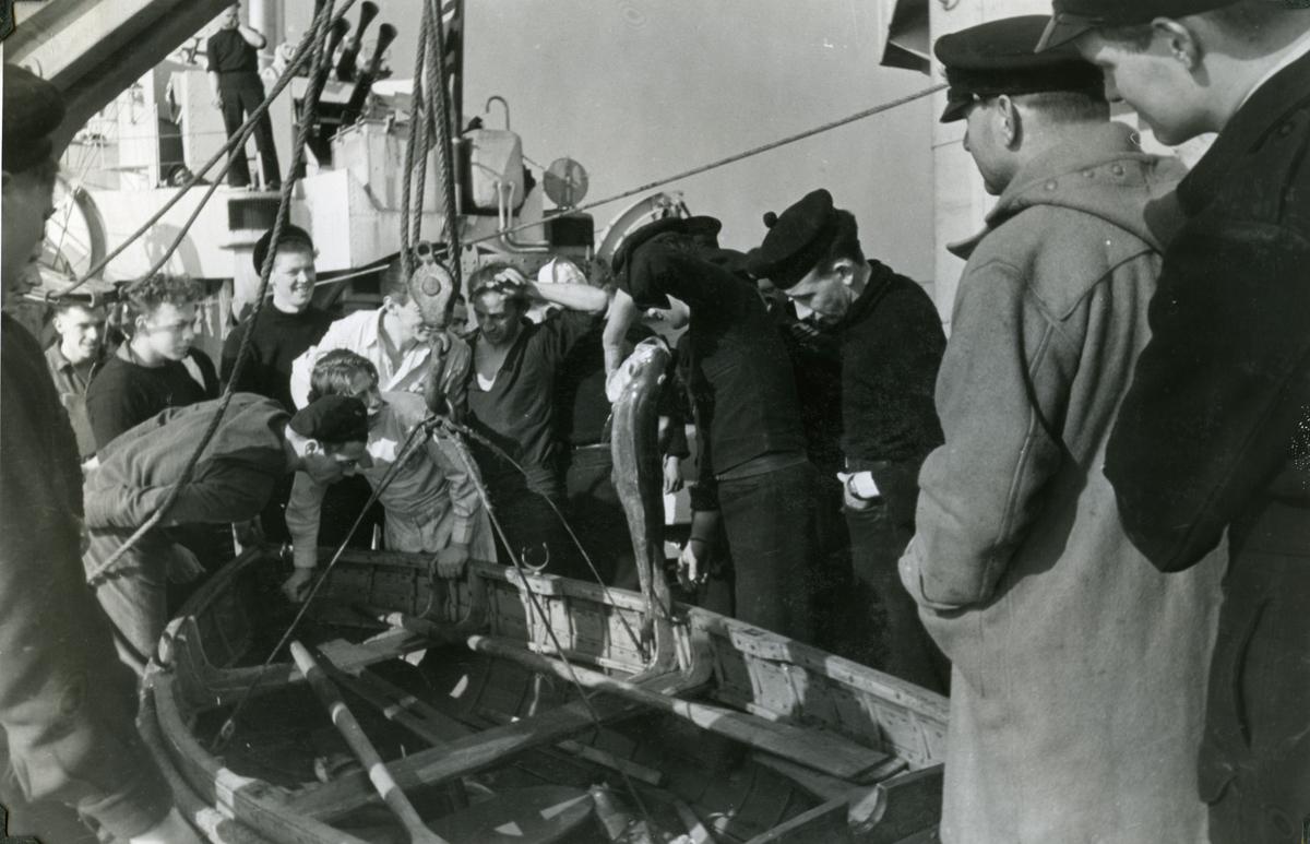 """Album Glaisdale H.Nor.M.S. """"Glaisdale"""". Fotograf: Ltn. Holter. Etter dypvannsladnings øvelse. Eksplosjonen brakte en del fisk til overflaten."""