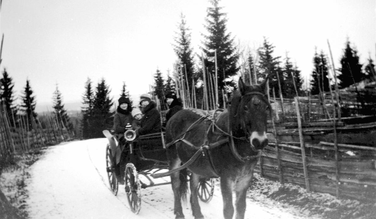 Ole Hanson Soug med familie. Søndagstur med hest og vogn.