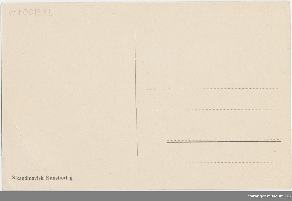 Postkort, Brodtkorbs forretning og bolighus, Festningsgata i bakgrunnen
