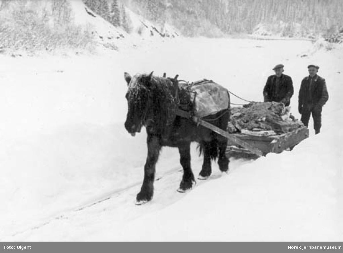 Linjeutbedring ved Godøya, hest med lass