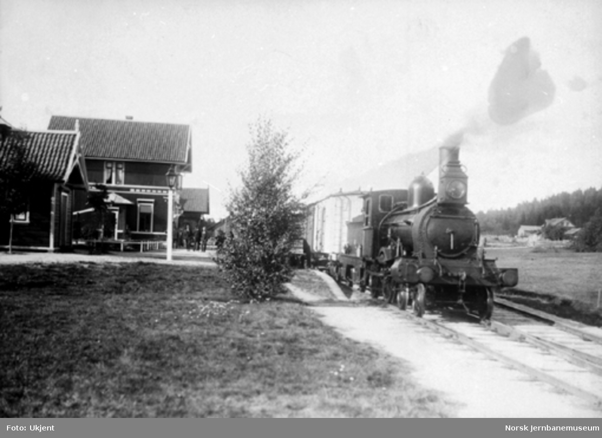 Damplokomotiv type 9a med tog på Arneberg stasjon