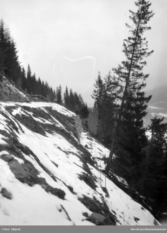 Veganlegget Madsveen - Årnes ved Losnavatnet : utrast parti av vegmuren