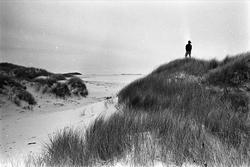 Serie. Sørlandet. Bebyggelse og landskap mellom Lista og Fle