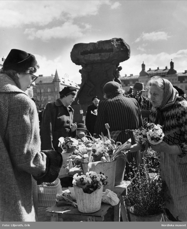 Blomförsäljning på Möllevångstorget, Malmö. Statyn Arbetets ära av Axel Ebbe i bakgrunden.