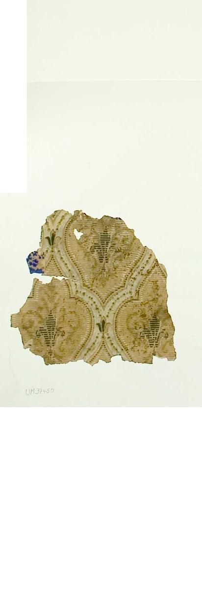 Tapetprov med tryckt mönster, grönt, beige och blått. Text på baksidan av kartongen: Nr  31 Kv. Svan nr 3 Klostergatan 15 B.v. rum 1 11 av 12.