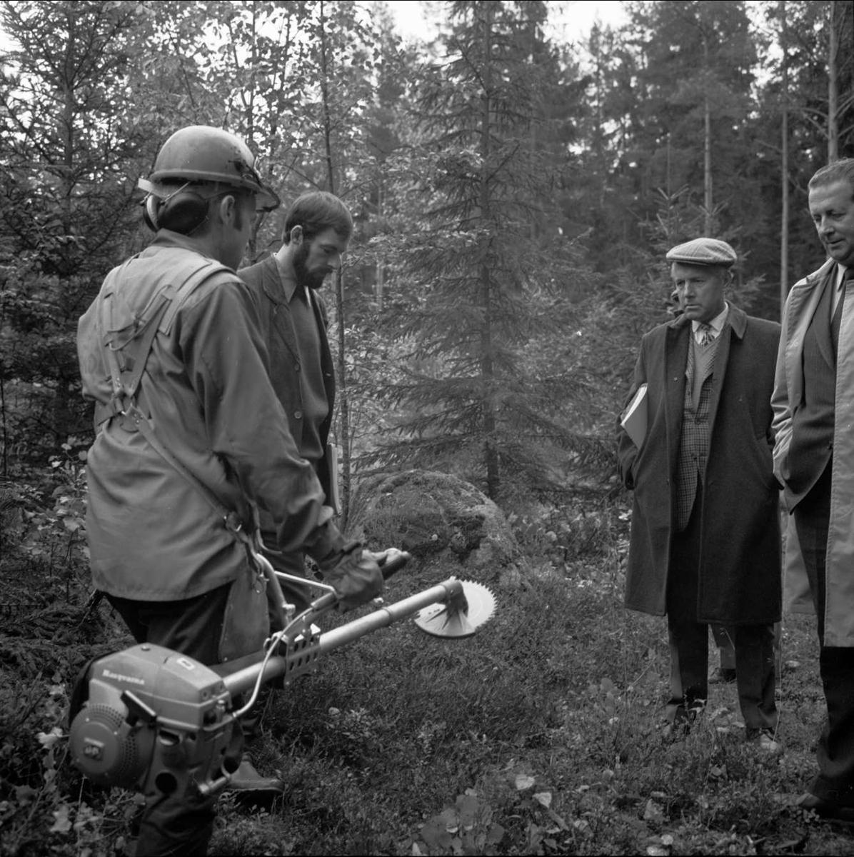 Skogsdagar i Norduppland, sannolikt i Tierps kommun, Uppland september 1972