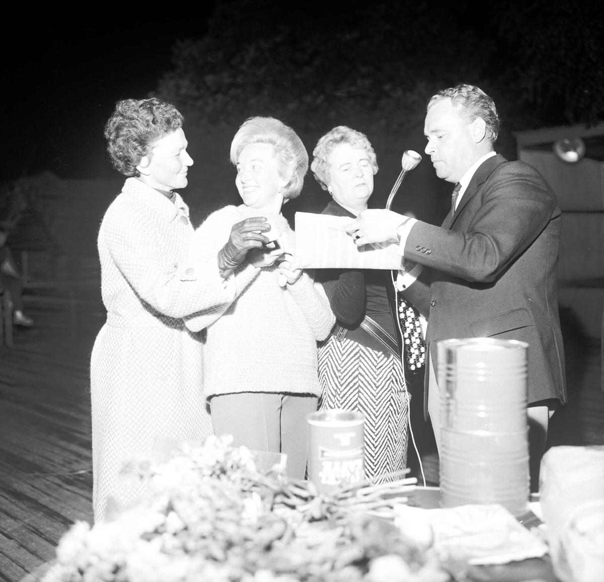 Augustikvitter i Tierp, Uppland augusti 1966