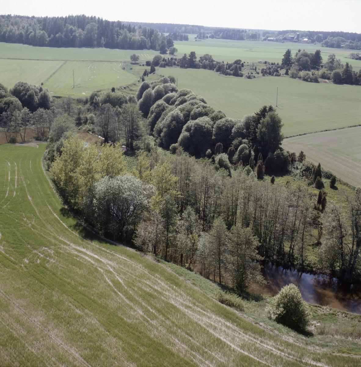 Vy över Altuna vid Jumkilsån, Börje socken, Uppland, juni 1989