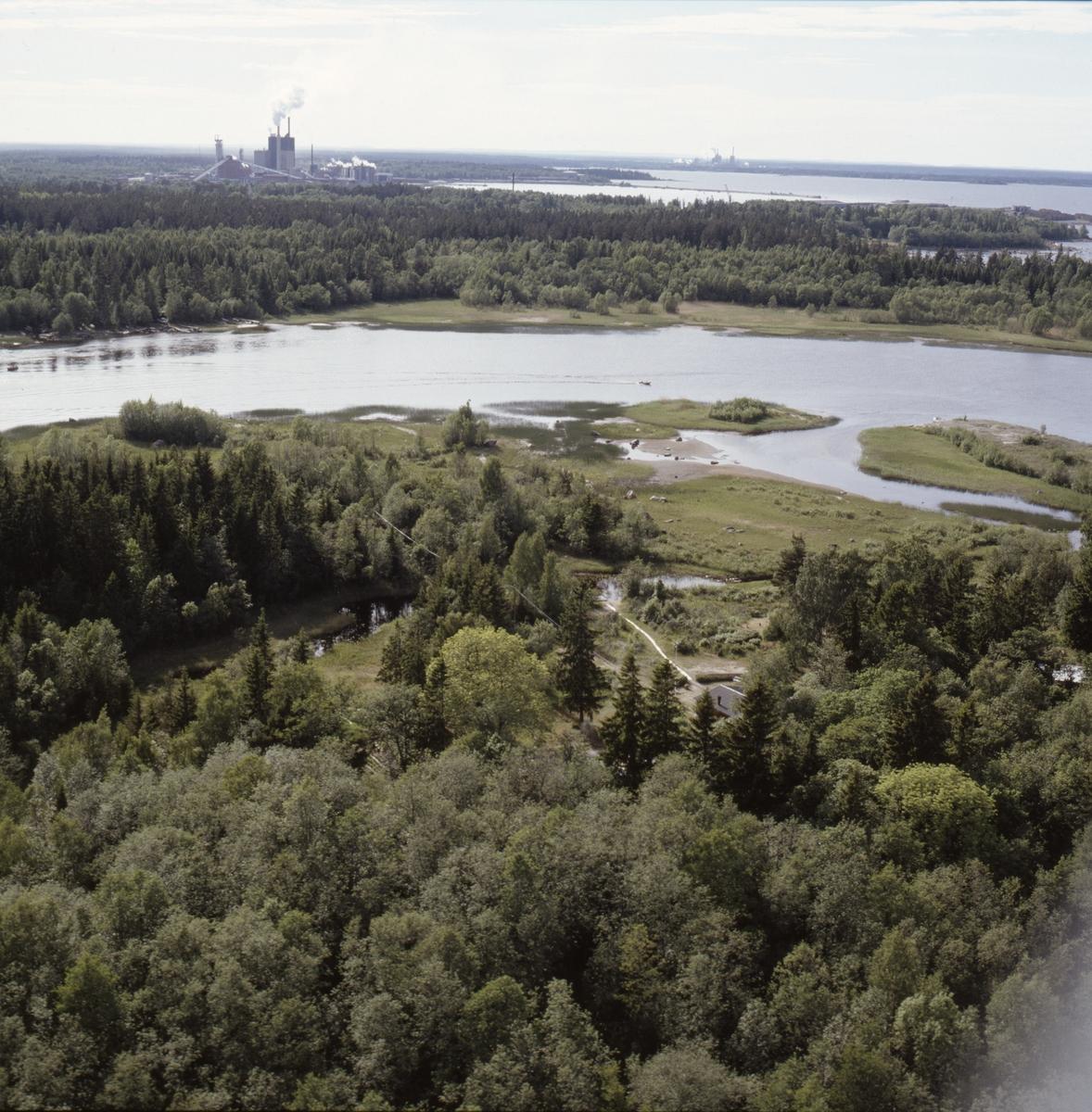 Vy över Dalälvens mynning vid Skutskär, Älvkarleby socken, Uppland, juni 1989