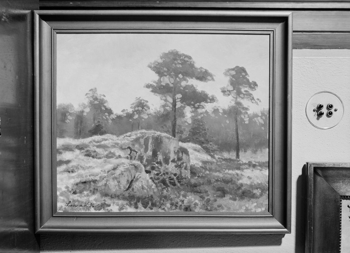 Oljemålning av Lindorm Liljefors tillhörande Per Johan Högfeldt, Nyborgs gård, Håtuna socken, Uppland 1940