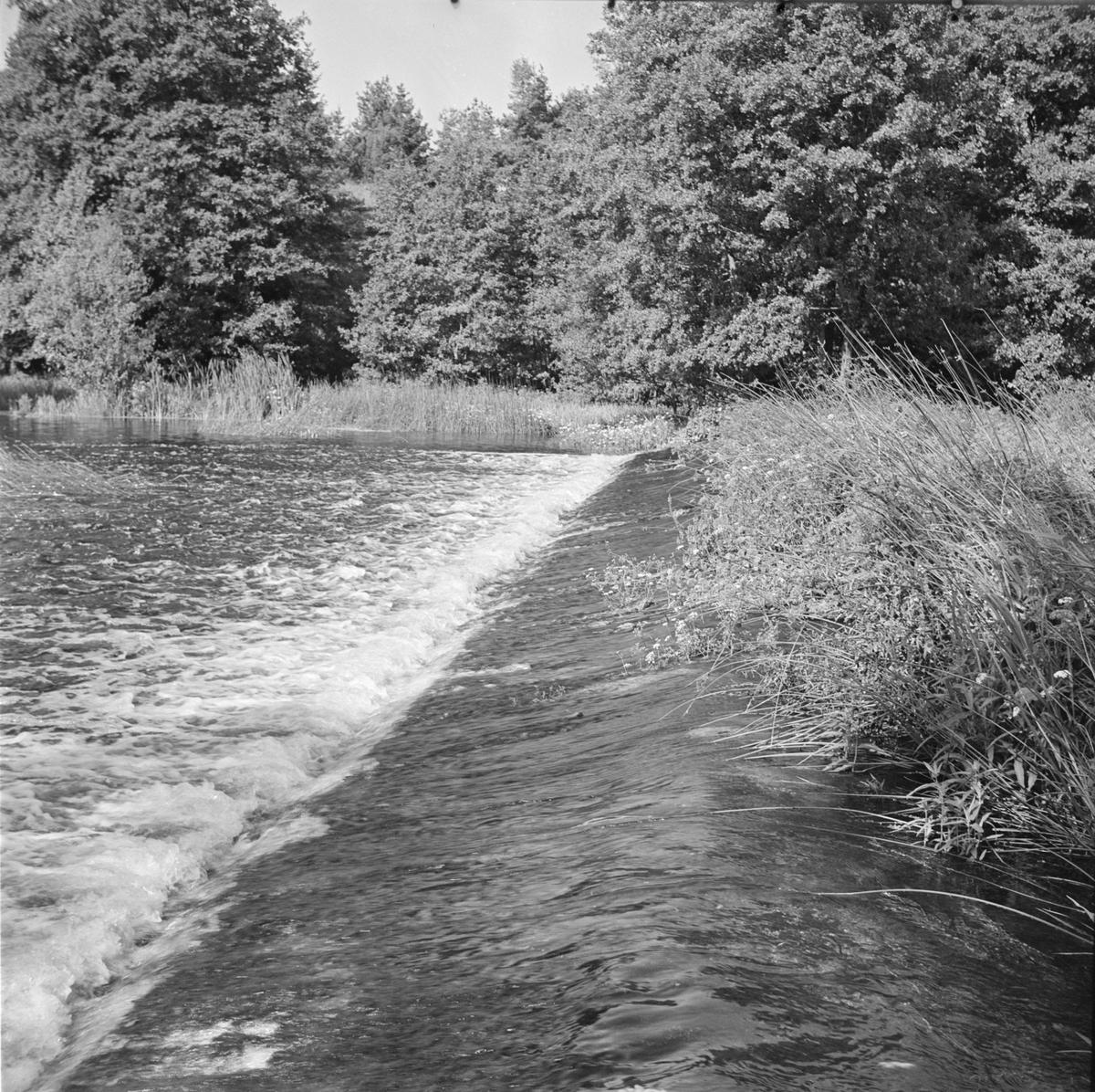 Dammfallet i Fyrisån vid Ensta, Uppland