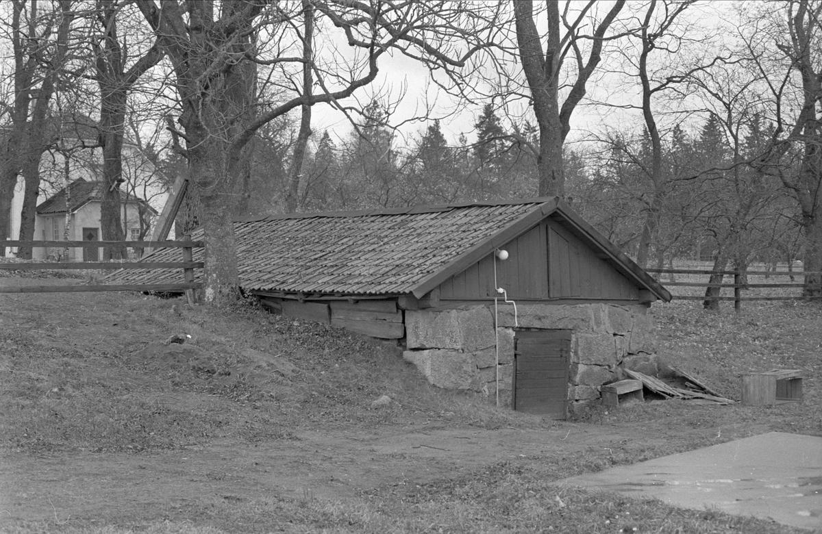 Källare, Skediga gård, Skediga, Bälinge socken Uppland 1978