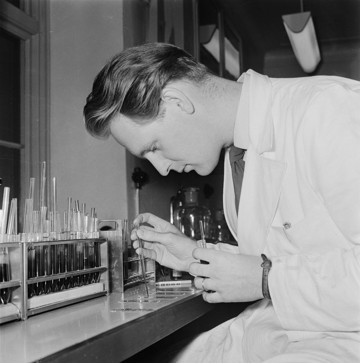 """Rasbiologiska institutet - Lars Beckman, """"som kartlagt svenskarnas blodgrupper"""", Uppsala januari 1958"""