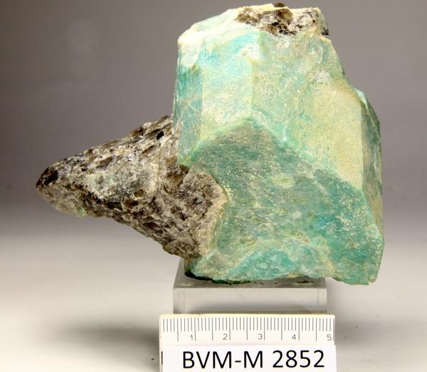 Sedimentære bergarter radioaktive dating
