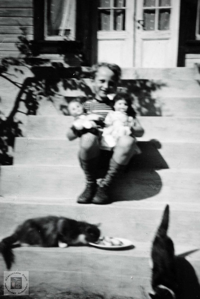 Bernt Flottorp koser seg på trappa med dokker og katter. Grindheim.