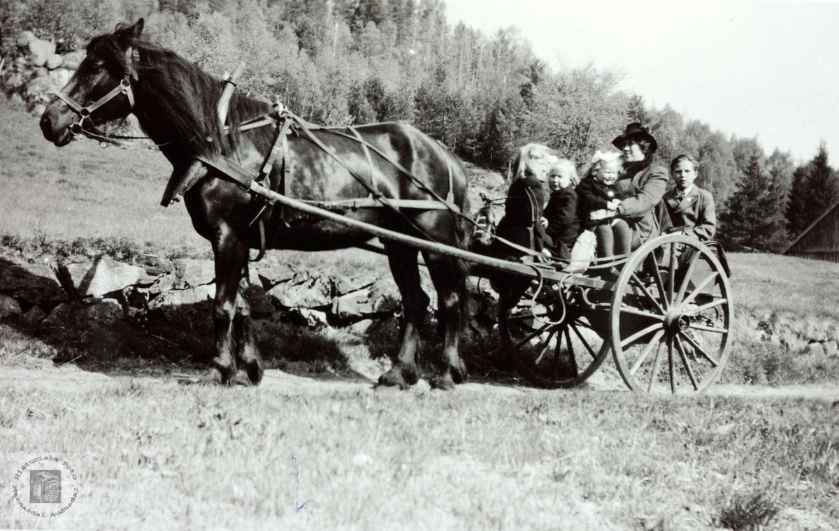Hesten står klar med fult lass på Flottorp. Grindheim Audnedal.